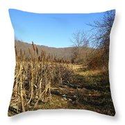 Field Of Corn Throw Pillow