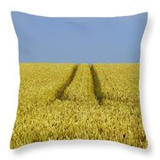 Field Of Corn Throw Pillow