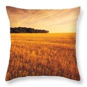 Field Of Grain Stubble Near St Throw Pillow