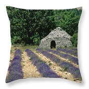 Field Of Lavender. Sault Throw Pillow