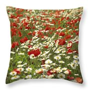 Field Of Poppies And Daisies In Limagne  Auvergne. France Throw Pillow