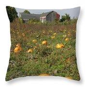 Field Of Pumpkins Throw Pillow