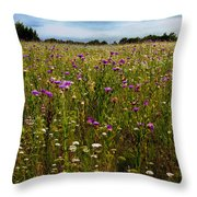 Field Of Thistles Throw Pillow