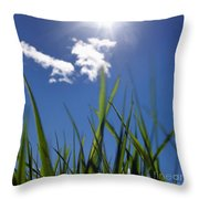 Field Of Wheat In Limagne. Auvergne. France. Europe Throw Pillow