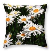 Field Of White Dasies Throw Pillow