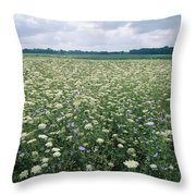 Field Of Wildflowers, Montezuma Throw Pillow