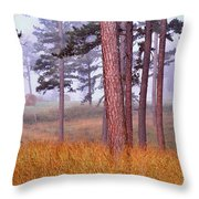 Field Pines And Fog In Shannon County Missouri Throw Pillow