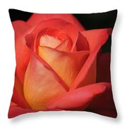 Fiery Color Rose Throw Pillow