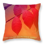 Fiery Colors Throw Pillow