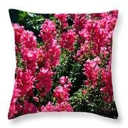 Fiery Pink Throw Pillow