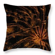 Fiery Throw Pillow by Rhonda Barrett