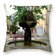 Fig Tree Fountain In Cassis Throw Pillow