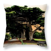 Fig Tree Lane Throw Pillow