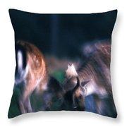 Fighting Fallow Deer Throw Pillow