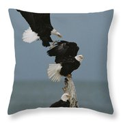 Fighting For A Space, A Northern Throw Pillow