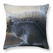 Fighting The Wind Chill Throw Pillow