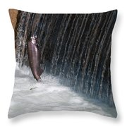Fighting Upstream Throw Pillow