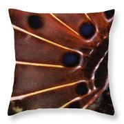 Fin Of A Scorpionfish, Indonesia Throw Pillow