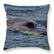 Fin Whale Charging Throw Pillow