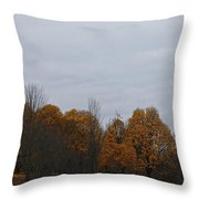 Final Color Throw Pillow