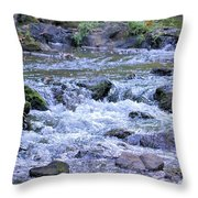 Final Voyage Throw Pillow