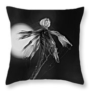 Finale Bw Throw Pillow