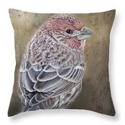 Finch Low Saturation Throw Pillow