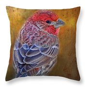 Finch With Gold Texture Throw Pillow