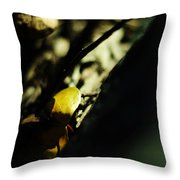 Finding Gold Throw Pillow