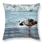 Fine Ocean Dining Throw Pillow by Paul Ward