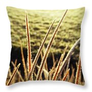 Fingers Of Frost Throw Pillow