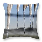 Fingers Of Winter Throw Pillow