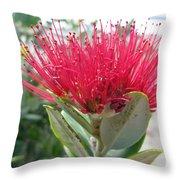 Fiore Rosso E Grasso Throw Pillow