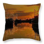 Fire And Ice Throw Pillow by Shirley Sirois