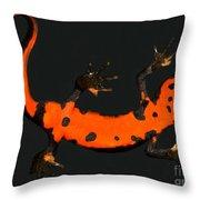 Fire Belly Newt Throw Pillow