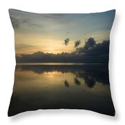 Fire In The Morning Throw Pillow