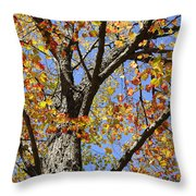 Fire Maple Throw Pillow