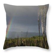 Fire Rainbow Throw Pillow