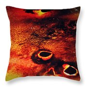 Fire Wall Throw Pillow by Empty Wall