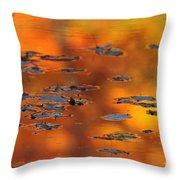 Fire Water  Throw Pillow