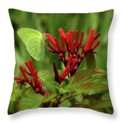 Firebush Throw Pillow