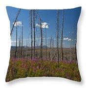 Fireweed  Epilobium Angustifolium Glacier National Park Usa -1 Throw Pillow