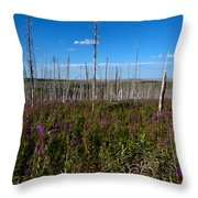 Fireweed  Epilobium Angustifolium Glacier National Park Usa -2 Throw Pillow