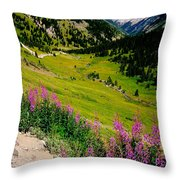 Fireweed In Henson Creek Drainage Throw Pillow