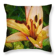 First Asiatic  Throw Pillow