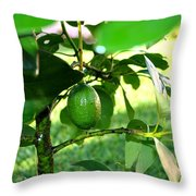 First Avocado Throw Pillow