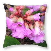 First Blooms Throw Pillow