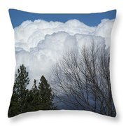 First Day Of Spring 2012 Throw Pillow