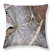 First Frost 1 Throw Pillow