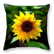 First In Bloom Throw Pillow